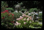cimetière non catholique, protestant de Testaccio