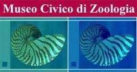 Musée zoologique de Rome