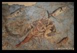 Fresques de villas romaines