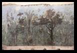 villa di livia, ninfeo, fresques - palazzo massimo