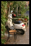 quartier navone à rome