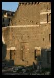 forum d'auguste