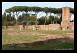 domus flavia colline du Palatin