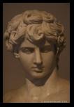 Antinous palazzo altemps - musée national romain
