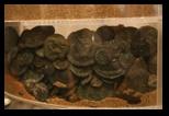 trésor monétaire romaine