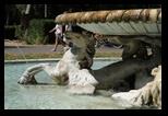 Fontana dei Cavalli marini - Parc de la Villa Borghese