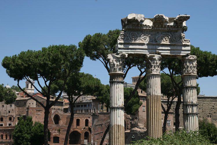 forum de césar, colonnes du temple de Vénus Genitrix