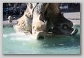 Fontaine du triton - rome