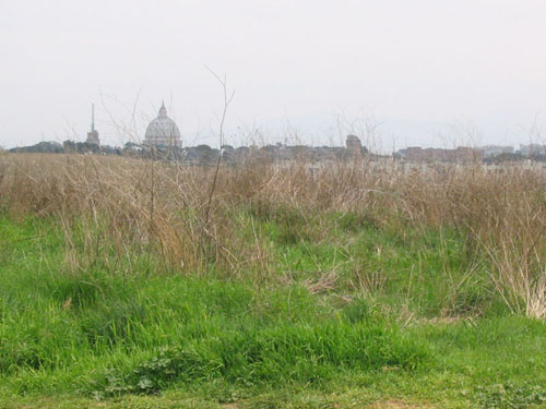 Parco della Pineta Sachetti
