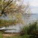 Tour du lac de Bolsena